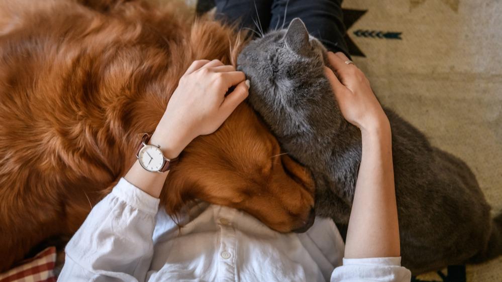 Žena se psem a kočkou